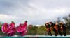 La Fiesta de Tumacácori showcases food, crafts, music and culture of Arizona's Santa Cruz Valley.    National Park Service